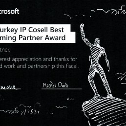 ip cosell award